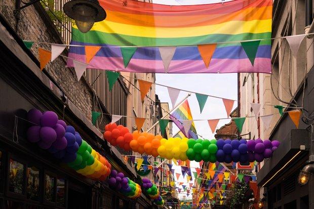 Gay Homo Stock