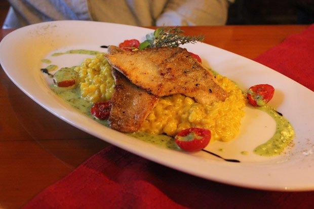 Gastronaut Stachel