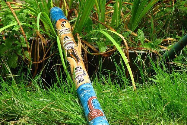 Didgeridoo Stock
