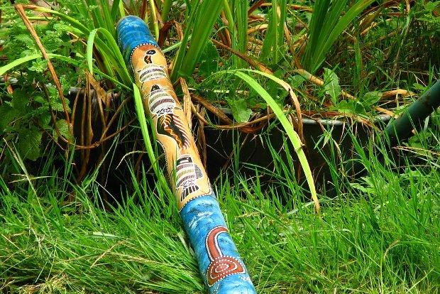 Didgeridoo Stock
