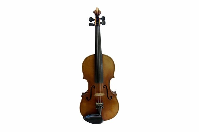 Violine Stock