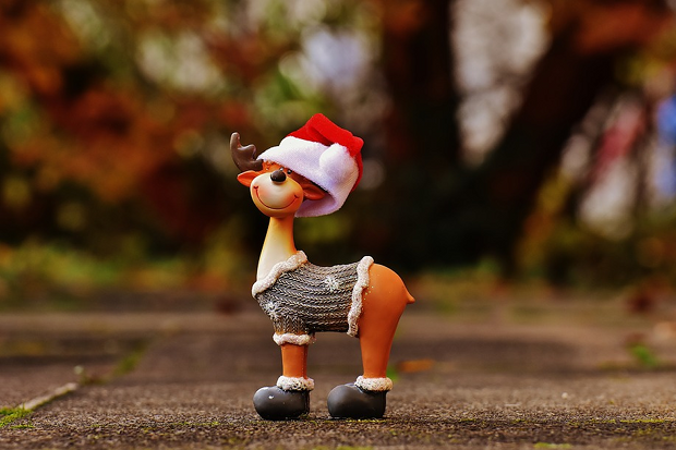 Weihnachten Rentier Stock