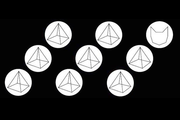 Katze Elektropyramide