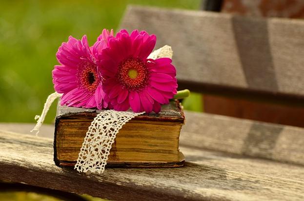 Buch Sommer Frühling Blumen Natur Lesen Freizeit Stock